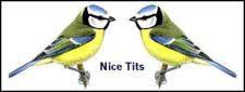 NICE-TITS