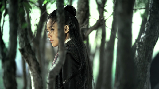 The Assassin | Director, Hou Hsiao-hsien